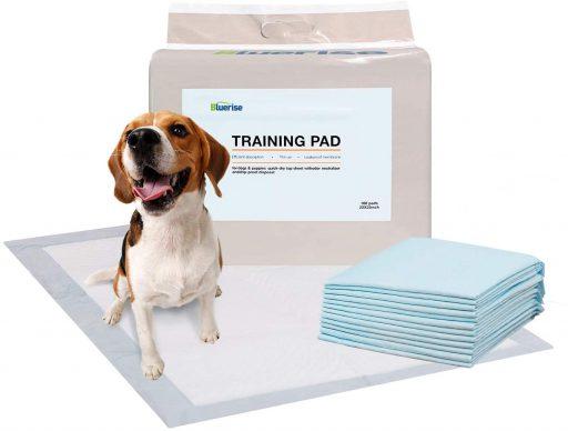 tapetes entrenadores para perro